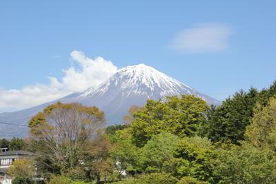 shiraito_004.JPG